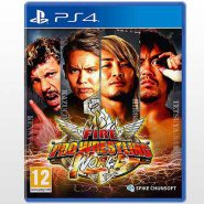 تصویر 2-Fire Pro Wrestling World