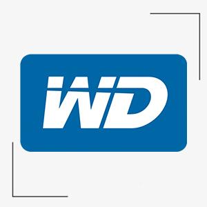 Western Wd