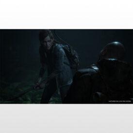 بازی پلی استیشن ۴ ریجن ۲-The Last of Us Part 2- دیجیتالی