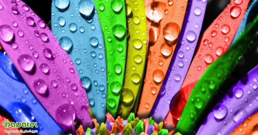 استفاده از رنگ ها در عکاسی