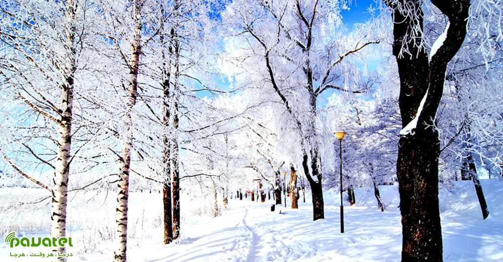 عکاسی از طبیعت در زمستان